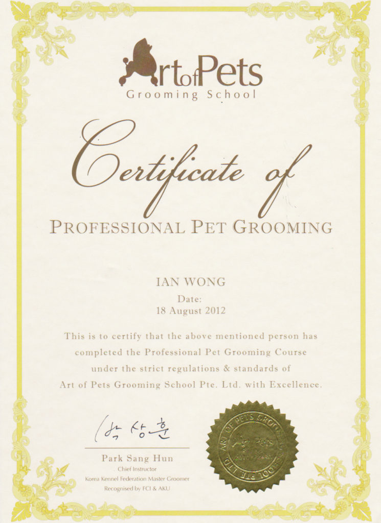 Dog Grooming Cat Grooming Singapore Mobile House Call Grooming